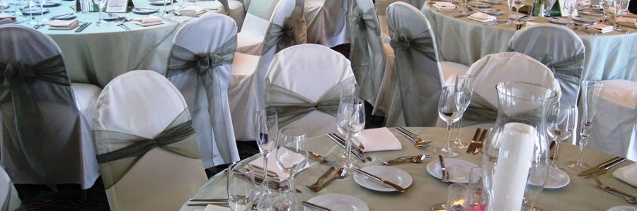 Ivory Chair cover with sage sash and overlay